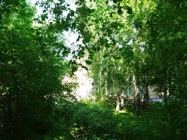http://images.vfl.ru/ii/1529690023/9040a8e1/22213758_m.jpg