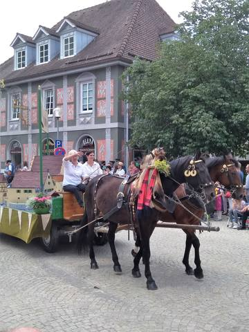 Немного о Германии - Страница 12 22239968_m