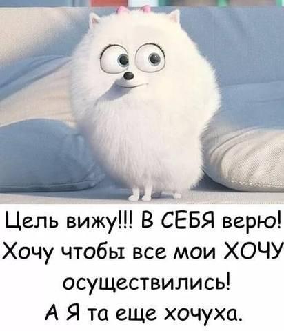 http://images.vfl.ru/ii/1530301672/3a0d4070/22300269_m.jpg