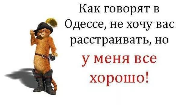 http://images.vfl.ru/ii/1530459210/af6cad86/22319813_m.jpg