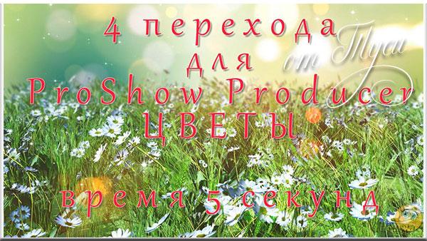 4 перехода для Проект ProShow Producer - Цветы