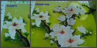 http://images.vfl.ru/ii/1530818306/3d9373a8/22372440_s.jpg