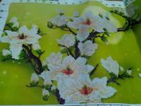 http://images.vfl.ru/ii/1530818751/5ff259ef/22372522_s.jpg