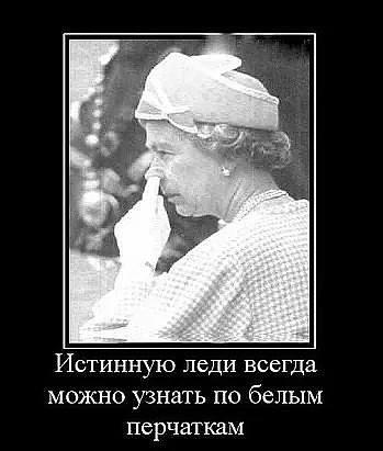 http://images.vfl.ru/ii/1530891076/7d4c5f6b/22381886_m.jpg