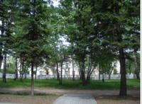 http://images.vfl.ru/ii/1530903692/f091e10b/22384328_s.jpg