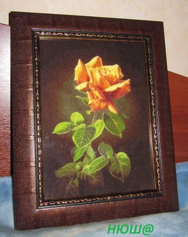 http://images.vfl.ru/ii/1530968544/dd5a481e/22391514_m.jpg