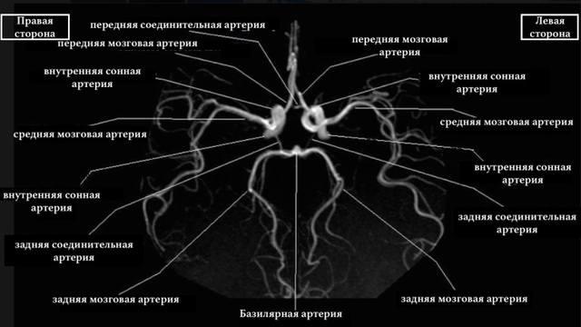 http://images.vfl.ru/ii/1530970086/19abc3ad/22391891_m.jpg