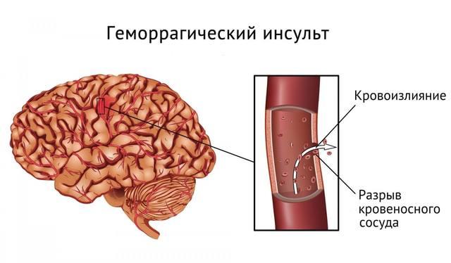 http://images.vfl.ru/ii/1530970411/9db10775/22391954_m.jpg
