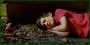 http//images.vfl.ru/ii/1531077267/b80dc8d7/22406253.jpg