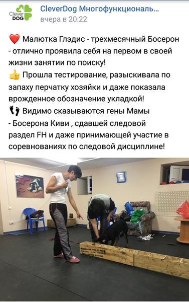 http://images.vfl.ru/ii/1531288531/581f03da/22438016_m.png