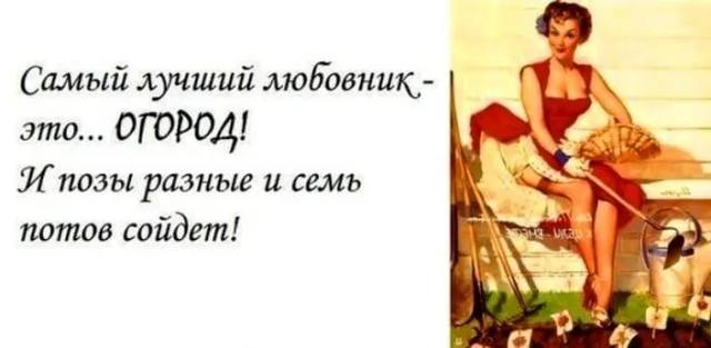 http://images.vfl.ru/ii/1531481450/edd87750/22467764_m.jpg