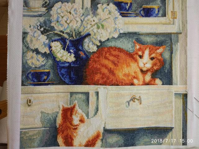 http://images.vfl.ru/ii/1531830517/c59cfcef/22518370_m.jpg
