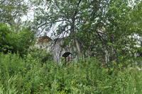 http://images.vfl.ru/ii/1532313761/5dc394bc/22588006_s.jpg