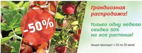 Промокод vsesorta.ru (Все сорта). Скидка на все растения - 50%!