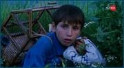 http//images.vfl.ru/ii/1532624407/6aedda/22638746.jpg