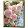 миниатюра-для-роз.арки