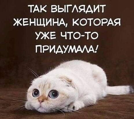 http://images.vfl.ru/ii/1532891058/4fe01a91/22678264_m.jpg