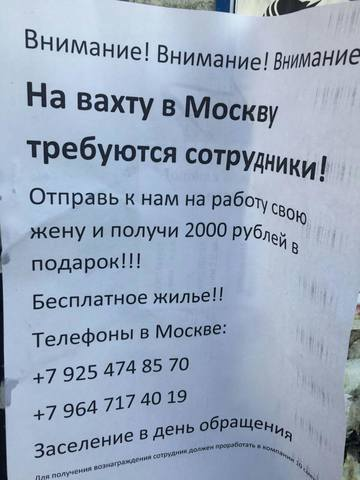http://images.vfl.ru/ii/1533538818/9bcb7869/22776418_m.jpg