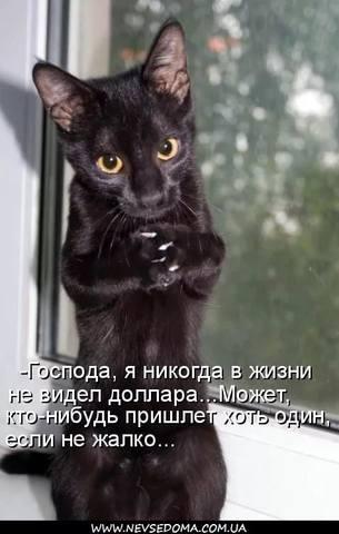 http://images.vfl.ru/ii/1533766163/3ca95fbd/22817777_m.jpg