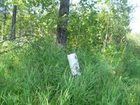 http://images.vfl.ru/ii/1533908283/9e4b38f0/22839403_s.jpg