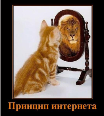 http://images.vfl.ru/ii/1533936588/1b873614/22845708_m.png