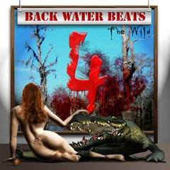 Sample Factory - Back Water Beats 4 (AIFF, REX2, WAV)