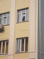 http://images.vfl.ru/ii/1534344221/2c7ff4ff/22903868_s.jpg
