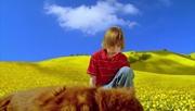 http//images.vfl.ru/ii/1534405319/92c8612b/229114.jpg