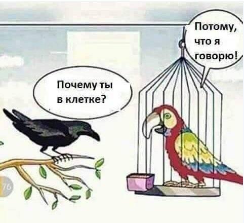 http://images.vfl.ru/ii/1534661932/7e22052a/22948160_m.jpg