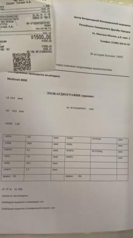 Финотчет август 2018 23002684_m