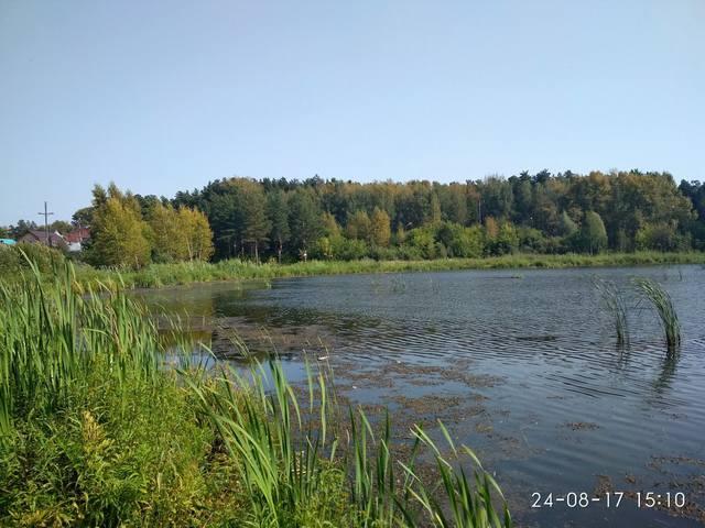 http://images.vfl.ru/ii/1535092119/1b062483/23023932_m.jpg