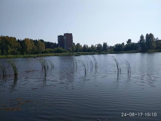 http://images.vfl.ru/ii/1535221223/c555d617/23048365_m.jpg