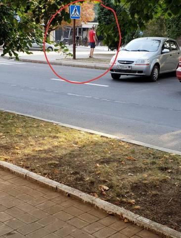 http://images.vfl.ru/ii/1535739114/dfa51313/23138223.jpg