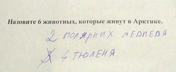 http://images.vfl.ru/ii/1536013132/78bc121a/23180178.jpg