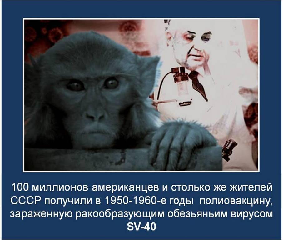 http://images.vfl.ru/ii/1536081866/b0d4663e/23190930.jpg