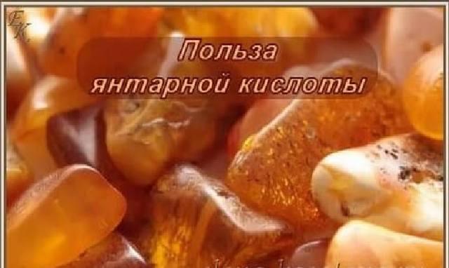 Янтарная Кислота - Это же Аналог Коэнзима Q10  «Эликсир Жизни». 23219522_m