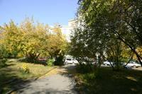 http://images.vfl.ru/ii/1536317346/c573ffb3/23230044_s.jpg