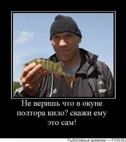 http://images.vfl.ru/ii/1536477957/26c09b8e/23254600_m.jpg
