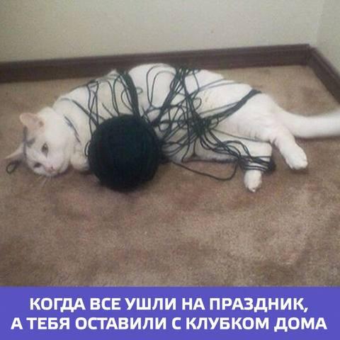 http://images.vfl.ru/ii/1536565467/29532a37/23268864_m.jpg