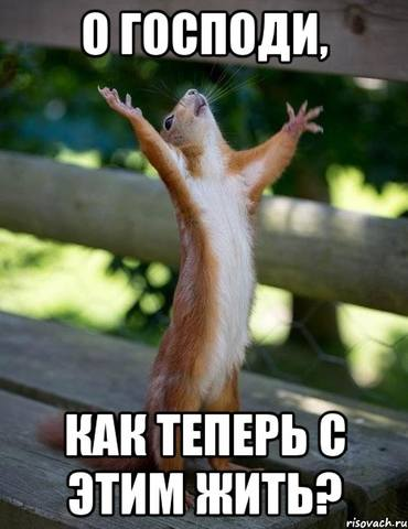 http://images.vfl.ru/ii/1536674002/218462e3/23289999_m.jpg