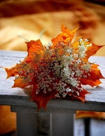 http://images.vfl.ru/ii/1536852543/568bc405/23321265_m.jpg
