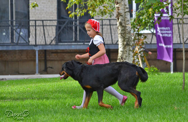 http://images.vfl.ru/ii/1537453213/c604408e/23419754_m.jpg