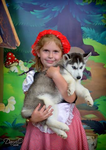 http://images.vfl.ru/ii/1537453424/b3ae4009/23419802_m.jpg