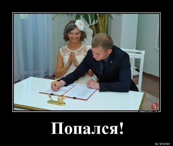 http://images.vfl.ru/ii/1537546339/c85c1c80/23439642_m.jpg