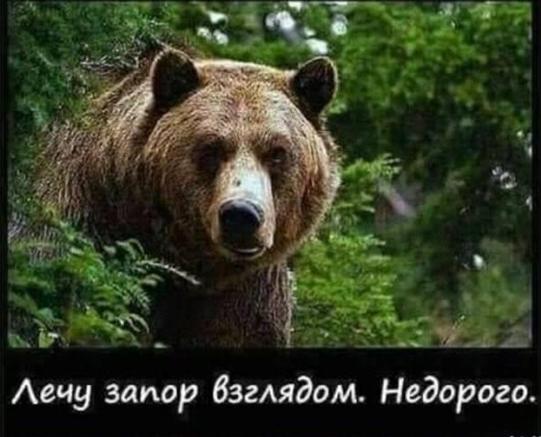 http://images.vfl.ru/ii/1537880964/9c90023c/23501104_m.jpg