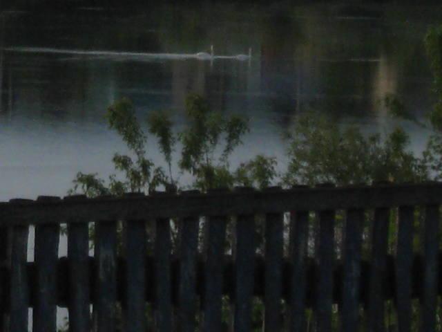 Заповедные места Боцмана - Страница 6 23508307_m