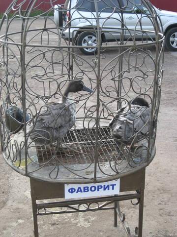 Заповедные места Боцмана - Страница 6 23517143_m
