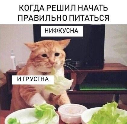 http://images.vfl.ru/ii/1538077399/f22ad21e/23538583_m.jpg