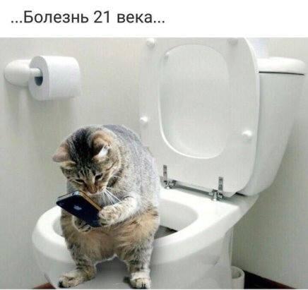 http://images.vfl.ru/ii/1538077902/93f9d812/23538699_m.jpg
