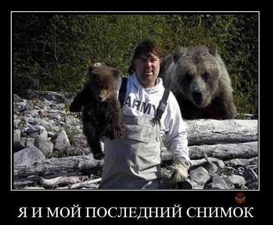http://images.vfl.ru/ii/1538243231/8b510dc1/23565775_m.jpg